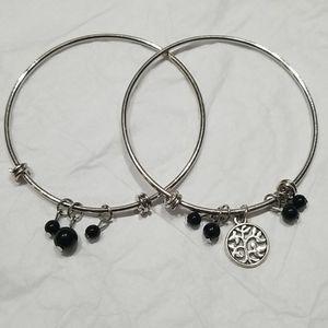 🧩 Paparazzi Bangle Bracelet set of 2